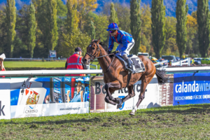 13.10.2019 – Sieg in Maienfeld